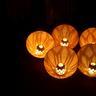 吉野山『花燈火』その1