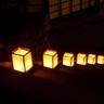 吉野山『花燈火』その8